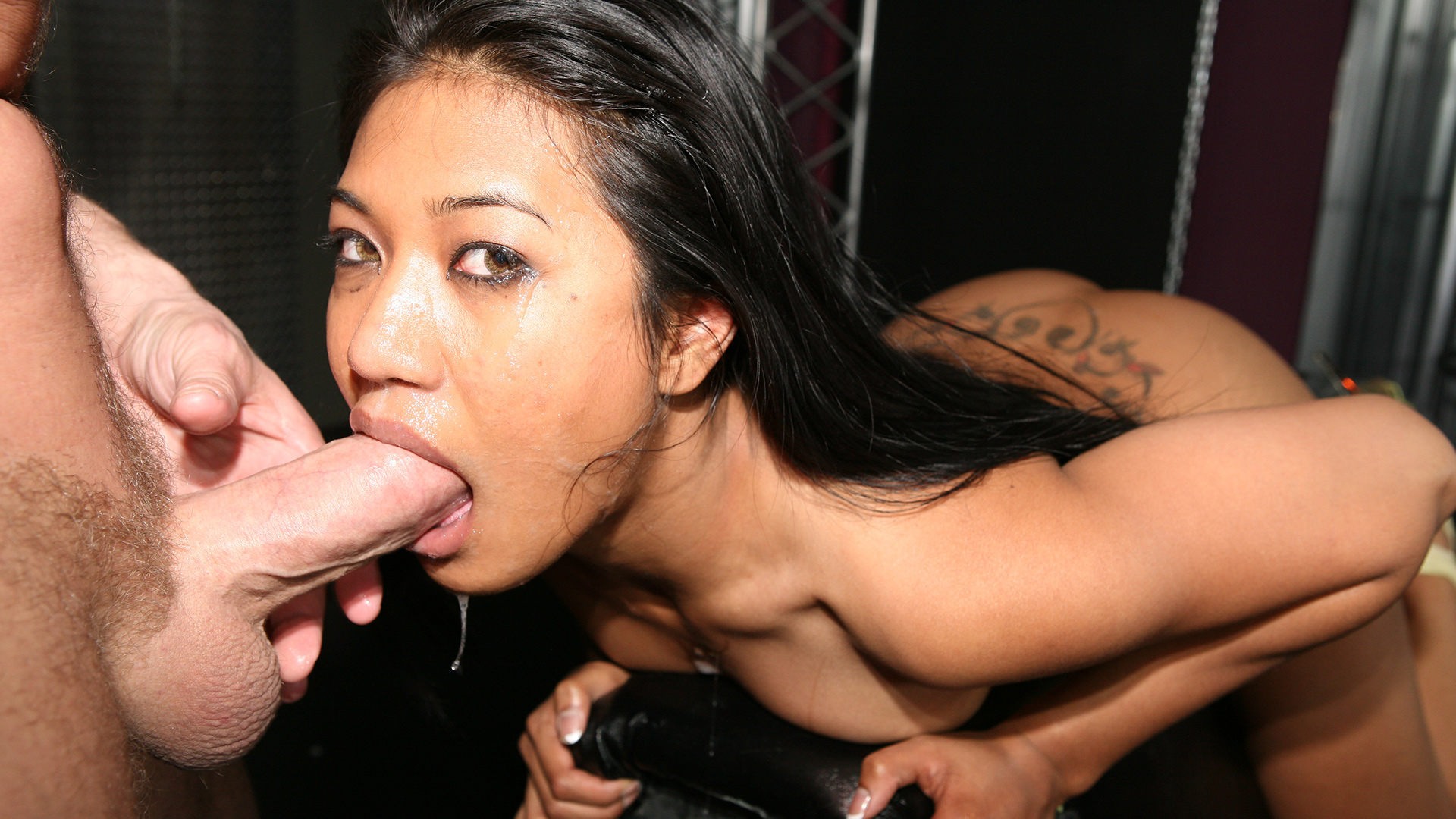 Asian swallows all